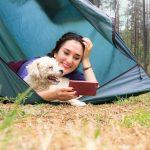 Todo Sobre el Tarot Online - Lectura y Aprendizaje