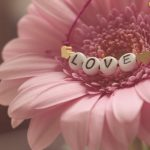 Compatibilidad de Aries y Virgo - amor, amistad y trabajo